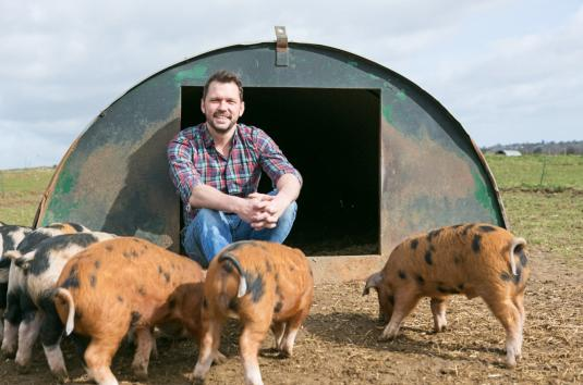 Jimmy at Jimmy's Farm with some pigs
